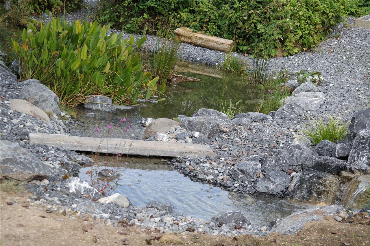 Bachlauf Teich Teichbau Wasserfall Serena Gartenbau Uster